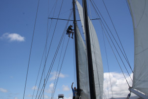 Learning the rigging by climbing the mast